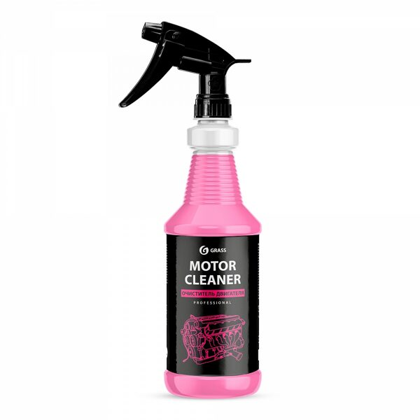 Motor Cleaner Professional 1l